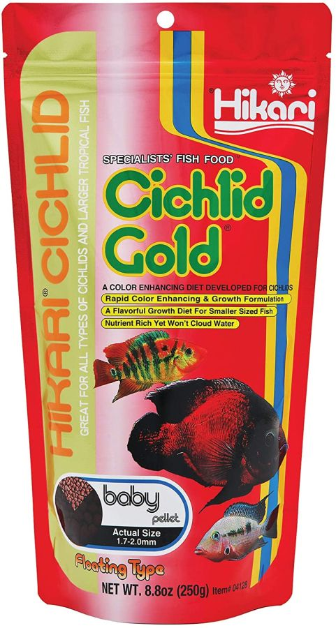 Hikari hikari cichlid gold color enhancing fish food for Baby koi food