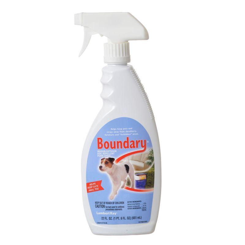 Natural Indoor Dog Repellent
