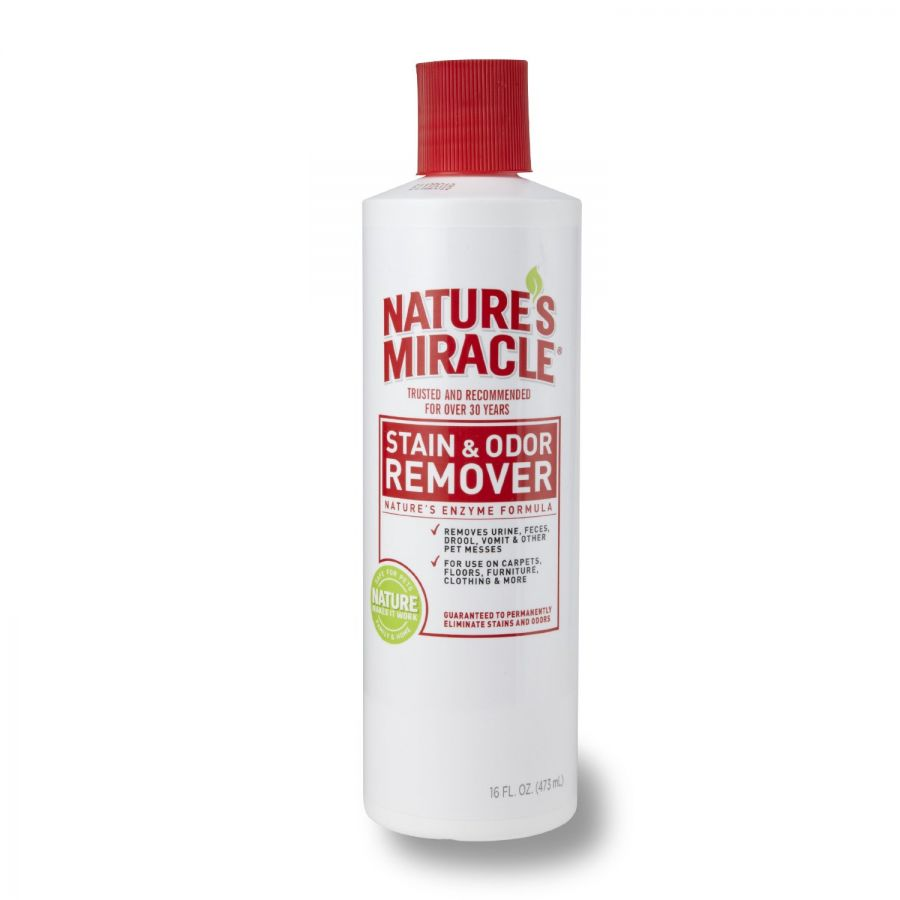 Nature Miracle Stain And Odor Remover Review