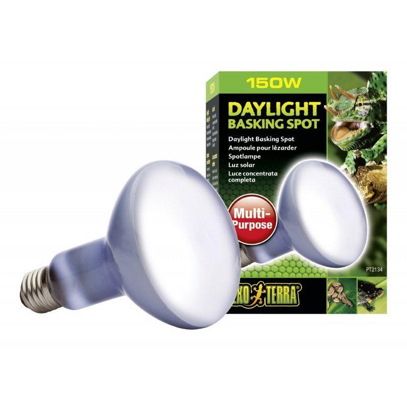 Exo Terra Exo Terra Sun Glo Neodymium Basking Spot Lamps Lighting Incandescent