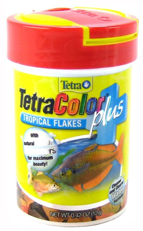 Tetra tetracolor plus tropical flakes fish food foods for Food for fish at home
