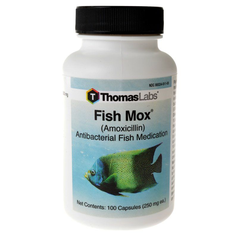 thomas labs thomas labs fish mox medications fw sw