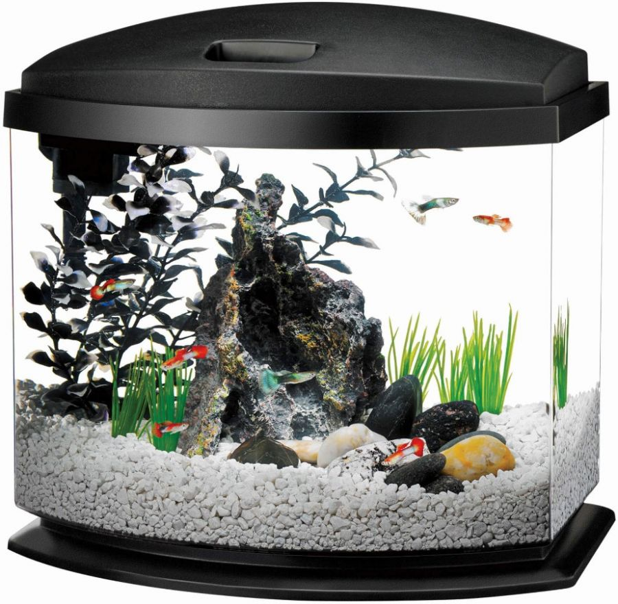 Aqueon aqueon led mini bow desktop aquarium kit black for Aqueon fish tank