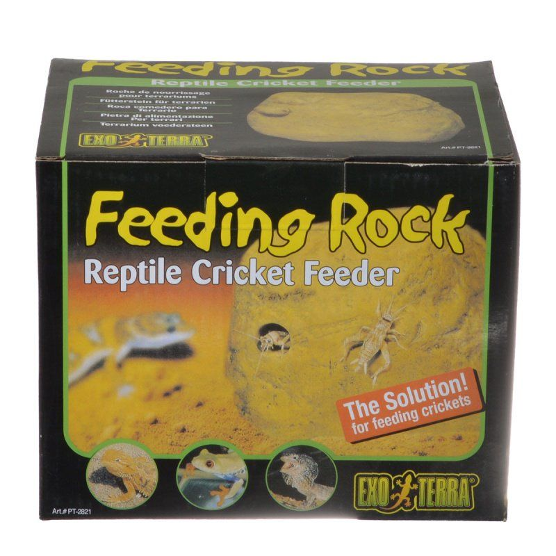 Exo Terra Exo Terra Feeding Rock Reptile Cricket Feeder
