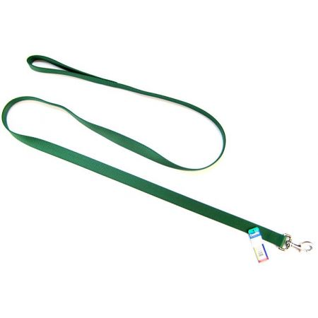 Coastal Pet Coastal Pet Single Nylon Lead - Hunter Green