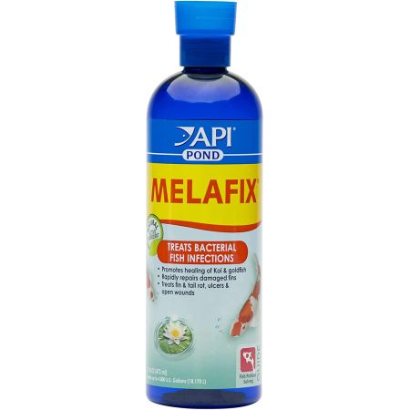 Pond Care PondCare MelaFix Antibacterial Remedy for Koi & Goldfish