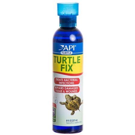 API Turtle Fix alternate view 2
