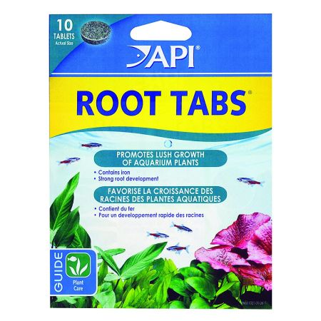API Root Tabs New