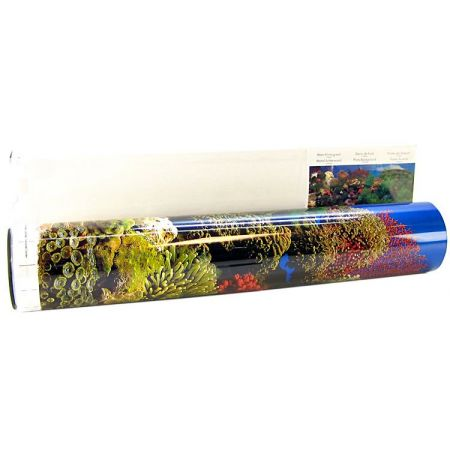 Blue Ribbon Pet Products Blue Ribbon Freshwater Garden & Carribean Coral Reef Double Sided Aquarium Background