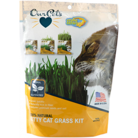 OurPets OurPets Cosmic Catnip Kitty Cat Grass