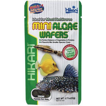 Hikari Hikari Mini Algae Wafers