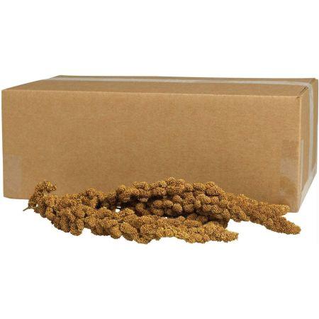 Kaytee Kaytee Gold Spray Millet
