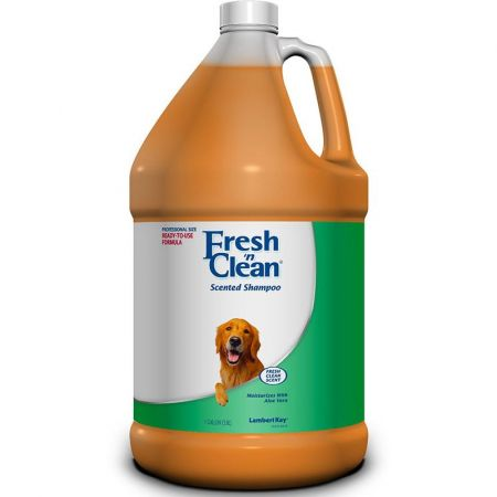 Fresh 'n Clean Fresh 'n Clean Scented Shampoo with Protein - Fresh Clean Scent