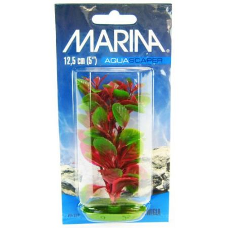 Marina Red Ludwigia Plant alternate view 1