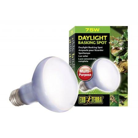 Exo-Terra Sun Glo Neodymium Basking Spot Lamps alternate view 2