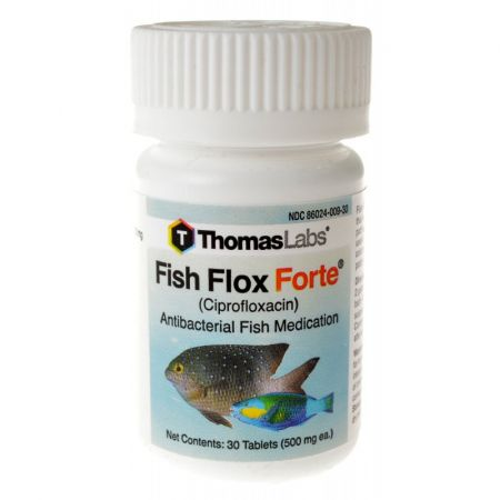 Medications fw sw where to buy medications fw sw at for Thomas labs fish mox forte
