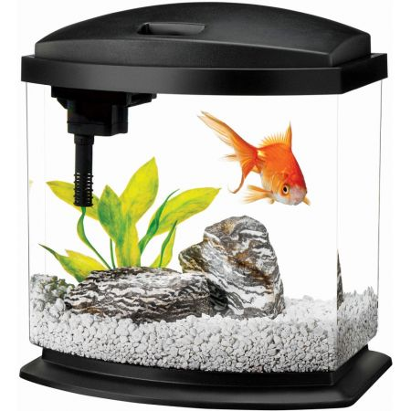 Aqueon Aqueon LED Mini Bow Desktop Aquarium Kit - Black