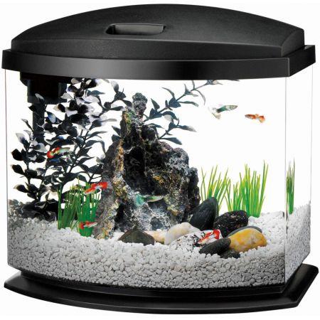Aqueon Aqueon LED Mini Bow Desktop Aquarium Kit - Black