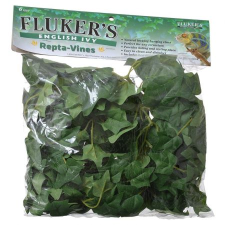 Flukers Flukers English Ivy Repta-Vines