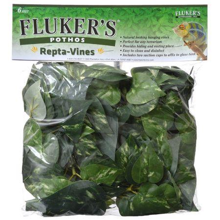 Flukers Flukers Pothos Repta-Vines