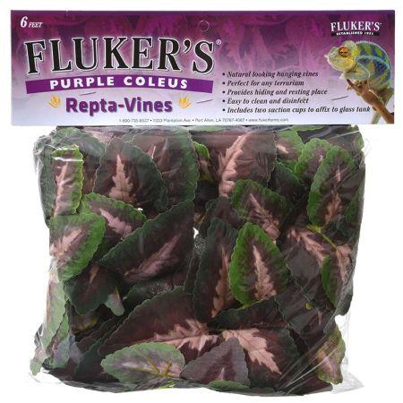 Flukers Purple Coleus Repta-Vines