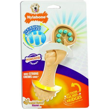 Nylabone Nylabone Squirrel Bristle Brush Dental Chew Toy