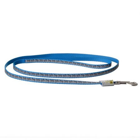Coastal Pet Lazer Brite Reflective Dog Leash - Turquoise Bones