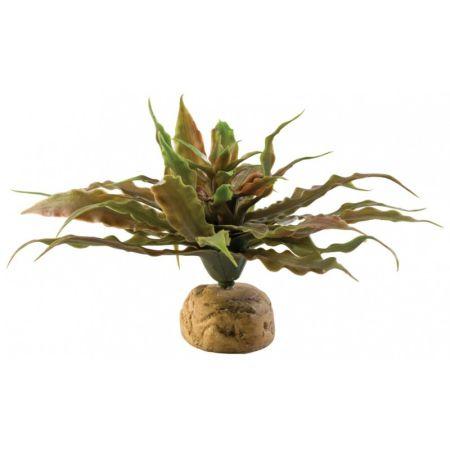 Exo-Terra Exo-Terra Desert Star Cactus Terrarium Plant