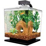 1.5 Gallon Aquarium Kit